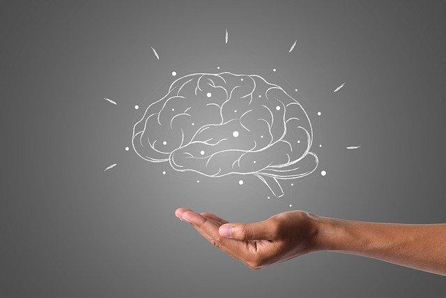 concussion-brain-function