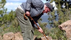 low-back-pain-elderly