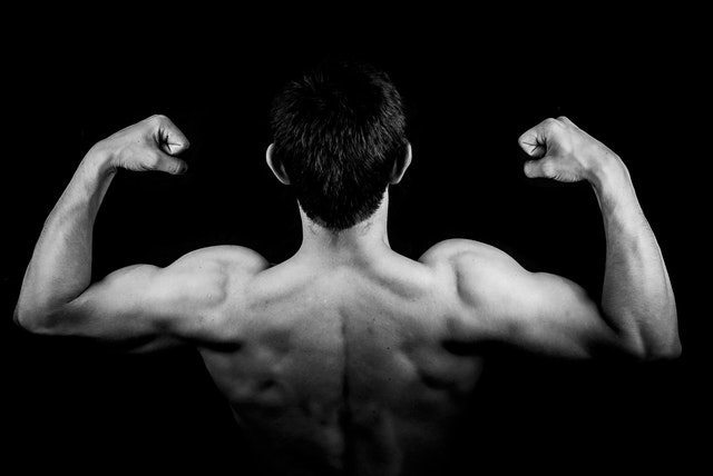 muscle-hypertrophy-keypoints