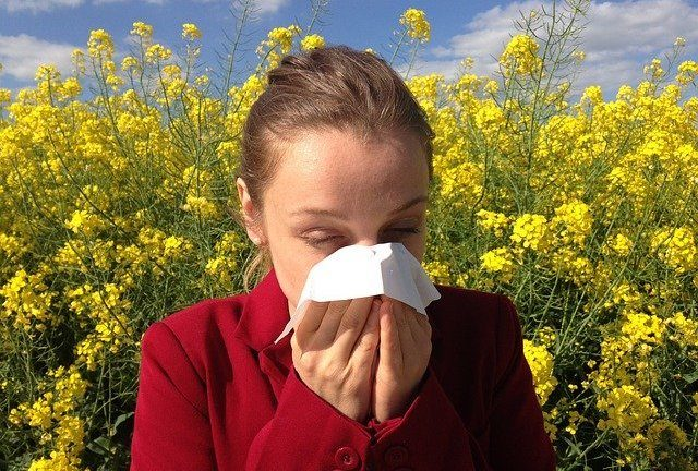 hay-fever-allergy